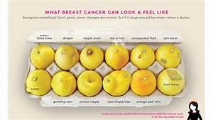 Know Your Lemons Designer Creates Novel Chart To Show