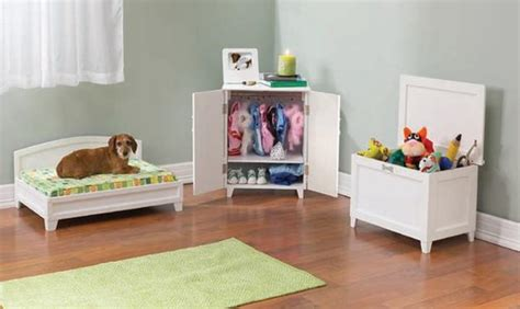 modern design ideas  pet beds  dogs  owners