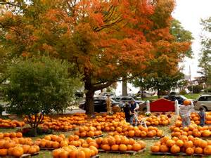 Pumpkin Patch Ma find the best fall foliage in new england with this