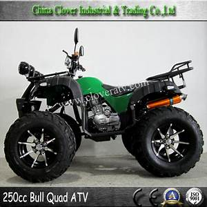 4 Stroke Air Cooled 250cc Sport Atv With Electrical Start