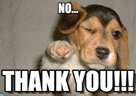Thank You Meme - no puppypoint meme on memegen
