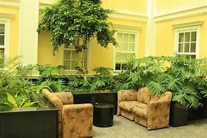 Images About Landscape Design On Pinterest Succulents