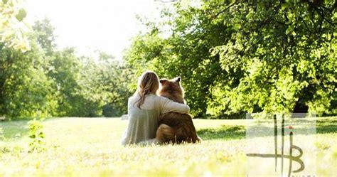 girl owner  dog  view rim lighting park  chicago