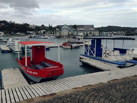 Boat Cruise In Port Alfred by 7 Unforgettable Things You Can Only Do In Port Alfred