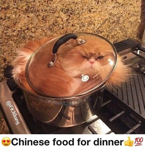 Chinese Food Meme - 25 best ideas about offensive memes on pinterest funny menes funny stories for kids and true