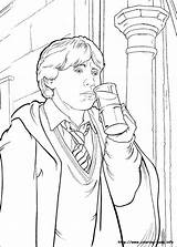 Potter Harry Coloring Chamber Secrets Fan Colouring Sheets Adult Ron sketch template