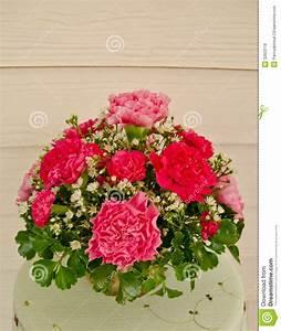 Beau Bouquet De Fleur : beau bouquet de fleur avec l 39 oeillet photo stock image ~ Dallasstarsshop.com Idées de Décoration