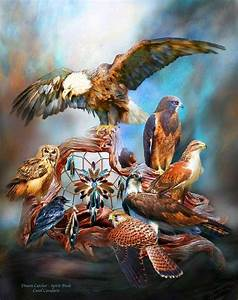native american animal spirit guides | Pin by Judy Woods ...