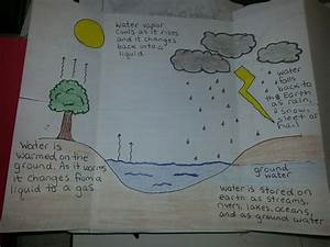 Inside Water Cycle Diagram  With Images