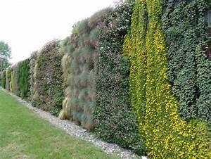 Mur Anti Bruit Végétal : merveilleux mur vegetal exterieur anti bruit 2 ~ Melissatoandfro.com Idées de Décoration