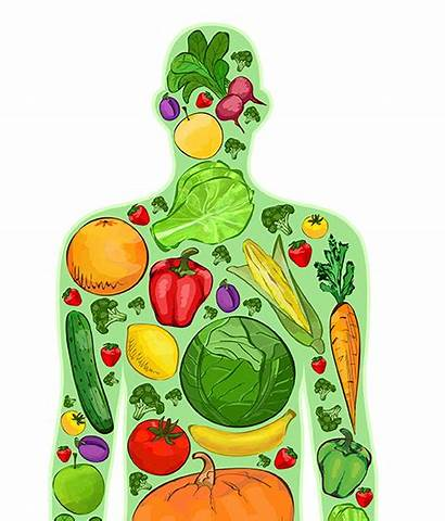 Healthy Nutrition Chiropractic Daily Health Keeping Living