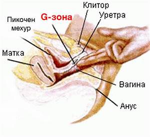 Клиника Наедине город Киров