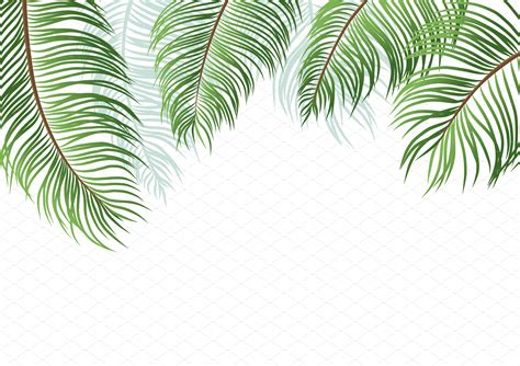 Palm Background Palm Leaves On White Background Illustrations Creative