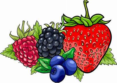 Cartoon Clipart Berry Fruits Strawberry Blueberry Blackberry