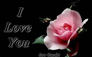 Rose Flower: Rose Flower Love You