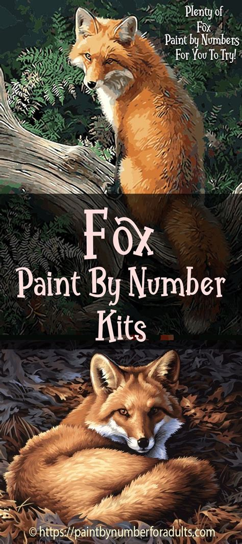fox paint  number kits paint  number  adults