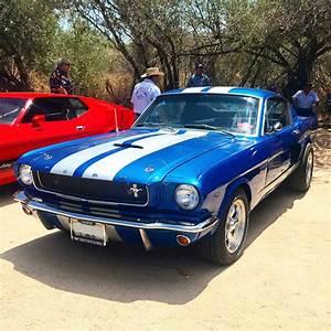 1965 Mustang Fastback   Mustang fastback, 1965 mustang, Ford mustang