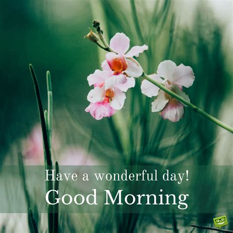 good morning cards  inspire  great  day