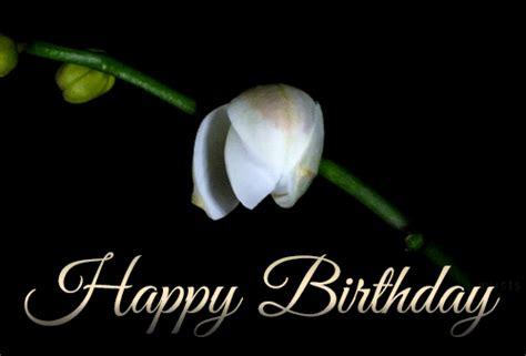 Happy Birthday Animated Images Happy Birthday Animated Gif Image 7 187 Gif