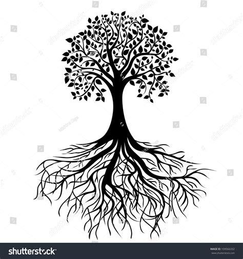 black tree roots isolated white stock illustration