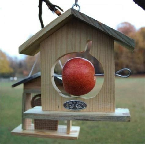 diy red cardinal bird house plans   wooden sleigh plans  good ideas  house