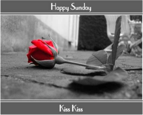 happy sunday kiss kiss sunday myniceprofilecom
