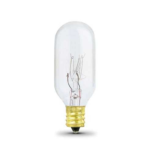 type t light bulb 25 watt incandescent t8 feit electric
