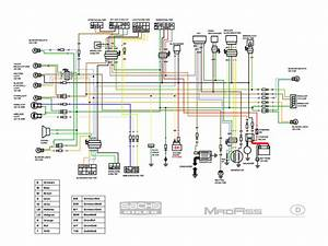 Diagram In Pictures Database  2001 Gsxr 600 Wiring