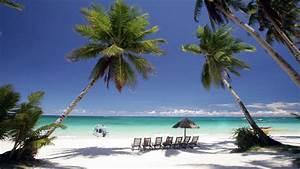 Bilder Von Palmen : philippinen jetzt am stachus sonne strand und palmen in m nchen m nchen abendzeitung m nchen ~ Frokenaadalensverden.com Haus und Dekorationen