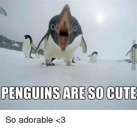 Cute Penguin Meme - 25 best memes about penguin penguin memes