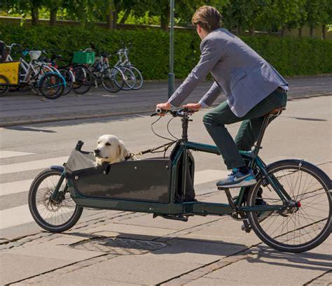 tipp  hund  fahrrad gewoehnen