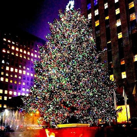 when is the christmas tree lighting nyc the 2015 rockefeller christmas tree lighting 2015 kicking