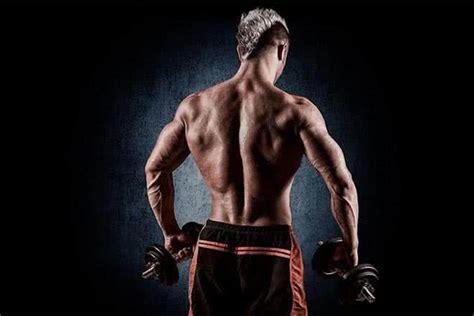 si鑒e pour le dos conseils pour la musculation des dorsaux espace musculation com