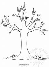 Tree Coloring Autumn Fall Pages Printable Trunk Colouring Line Preschool Drawing Bare Bush Season Trees Craft Outline Nature Coloringpage Eu sketch template