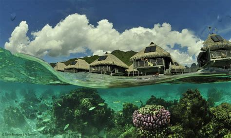 bora tahiti island vacation water travel bodies clear crystal guide wonderful packages beauty con polynesia natural shark locals cruise french