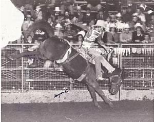 Australian Stockman U0026 39 S Hall Of Fame