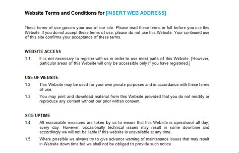 terms  conditions template cyberuse