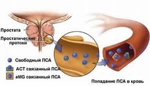 Аналоги таблеток от простатита