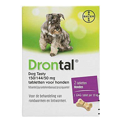 drontal dog tasty entwurmungstablette hund tab