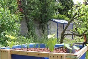 Faire Sa Serre En Polycarbonate : construire ou acheter sa serre aquaponie ~ Premium-room.com Idées de Décoration