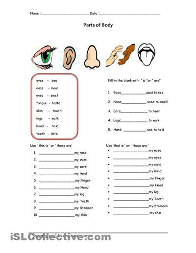 elementary science worksheets switch conf elementary