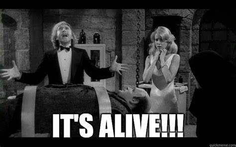 Young Frankenstein Meme - early literacy ipads implementation public response upkeep library bonanza