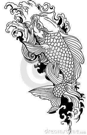 Koi carp swimming upstream. Japanese gold fish with water