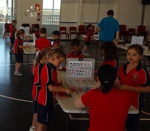 Programs Events Bricks 4 Kidz Queensland Brisbane