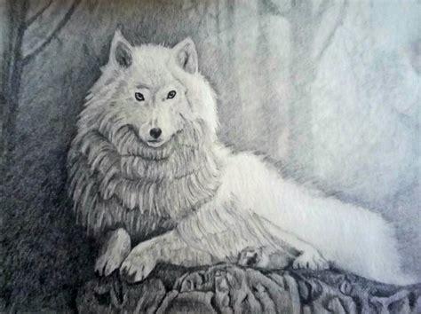 lobo por arielesteban dibujando