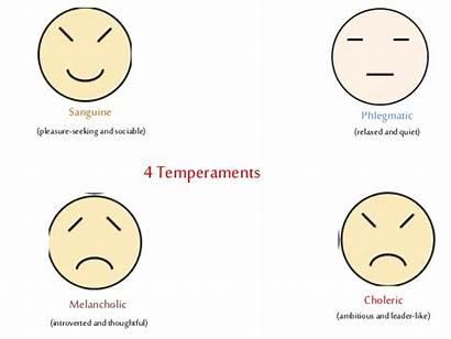 Temperament Personality Theory Human Behavior Development Theories