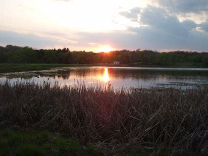 Pa Fish And Boat Commission Biologist Reports by Pfbc 2008 Biologist Report Lower Hereford Manor Lake
