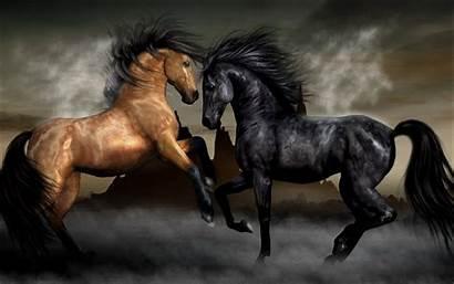 Horse 4k Desktop Wallpapers Iphone Ipad Wallpapertag