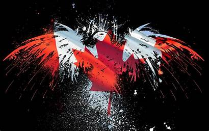 Flag Wallpapers Eagle Canada Cool Canadian American