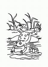 Frog Coloring Pond Frosch Ausmalbilder Frogs Malvorlagen Colouring Lily Pad Theme Jumping Jump Kinderbilder Kostenlos Konabeun Kinder Fur Template Malvorlage sketch template